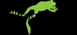 bullfrog_power_logo